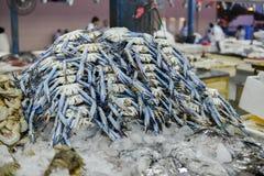 Cangrejo fresco para la venta Foto de archivo libre de regalías