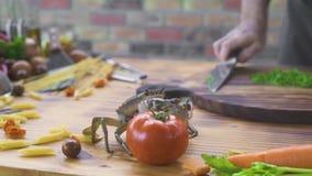 Cangrejo vivo que se arrastra en la tabla en marisquería mientras que cocina la comida Cocinero del cocinero que toma el cangrejo almacen de metraje de vídeo
