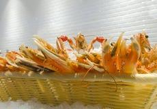 Cangrejo y langosta en el hielo Fotografía de archivo