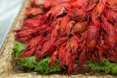 Cangrejos cocinados rojos Fotografía de archivo