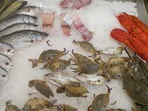 Cangrejos en el hielo, el cangrejo de la comida y pescados Imagen de archivo libre de regalías