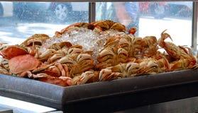 Cangrejos en la parada de la comida de la calle fotografía de archivo