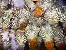 cangrejos frescos en la caja de hielo en mercado de los mariscos Fotografía de archivo