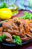 Cangrejos hervidos rojos y apetitosos Imagenes de archivo