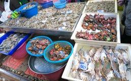 Cangrejos y pescados en el mercado en Bangkok Imagen de archivo