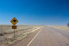 Canguro Outback Immagini Stock Libere da Diritti