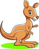 Canguru engraçado ilustração do vetor