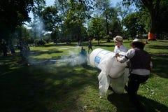 Canhão 24 do fumo Fotografia de Stock