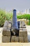 Canhão do `s de Napoleon. Imagens de Stock Royalty Free