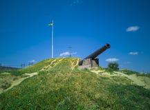 canhão 49-Iron Foto de Stock Royalty Free