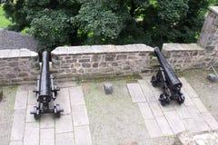 canhões do muralha do castelo imagem de stock
