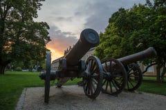 Canhões históricos na frente da construção da universidade de Bona no Imagens de Stock