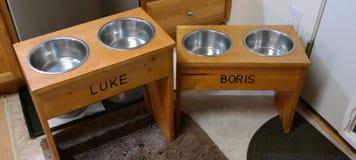 Cani che alimentano stazione Immagine Stock Libera da Diritti
