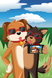 Cani che prendono un selfie Immagini Stock