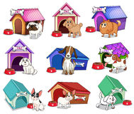 Cani con le case Immagini Stock Libere da Diritti