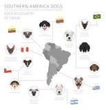 Cani da pæse d'origine Razze dell'America latina del cane Infographi illustrazione vettoriale