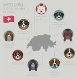 Cani da pæse d'origine Razze svizzere del cane Templat di Infographic Illustrazione di Stock