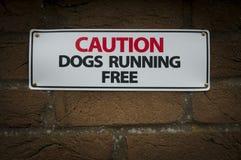 Cani di avvertenza che eseguono segno libero Immagini Stock