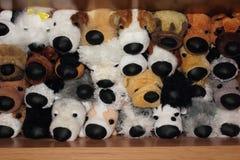 Cani di giocattoli Fotografie Stock Libere da Diritti