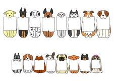 Cani di seduta con il bordo nelle loro bocche Fotografie Stock