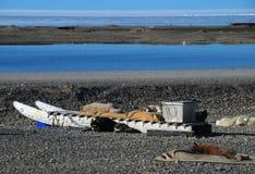 Cani di slitta di riposo dell'isola Ellesmere Immagini Stock Libere da Diritti