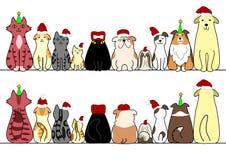 Cani e gatti in una fila con lo spazio, la parte anteriore e la parte posteriore della copia Immagini Stock Libere da Diritti