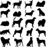 Cani famosi dell'animale da allevamento Immagini Stock Libere da Diritti