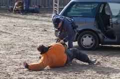 Cani poliziotti sul lavoro Fotografie Stock Libere da Diritti