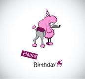 Caniche do feliz aniversario Foto de Stock Royalty Free