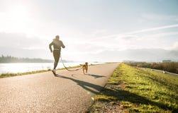 Canicross锻炼 户外运动活动-跑步与他的小猎犬狗的人 免版税库存照片