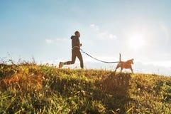 Canicross exercises. Man runs with his beagle dog at sunny morning royalty free stock photos