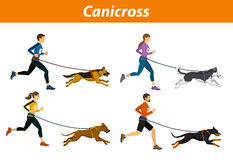 Canicross Outdoor Training with Dogs. Men, women, Group of people running pulled by dogs corss country workout isoltated vector illustration royalty free illustration
