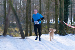 Canicross running in snow Stock Photos