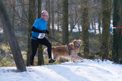 Canicross running in snow Stock Image