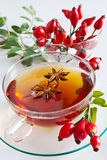 Canina rosa with ripe red berries / rose hip Pometu Stock Photo