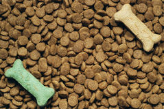 Canine meal. Pile of dog food pellets garnished with bone shaped treats Stock Photos