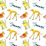 Canine seamless pattern cheerful multicolored. Watercolor on white background royalty free illustration