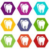 Canine tooth icons set 9 vector. Canine tooth icons 9 set coloful isolated on white for web royalty free illustration