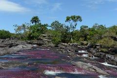 Canio Cristales山河 哥伦比亚 库存图片