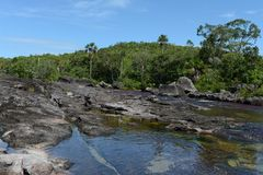 Canio Cristales mountain river. Colombia Royalty Free Stock Photo