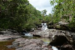 Canio Cristales mountain river. Colombia Royalty Free Stock Photos