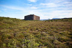 Canion Asbyrgi, IJsland Stock Fotografie