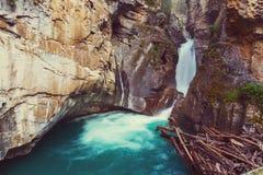 Canion in Banff NP Stock Afbeeldingen