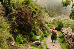 Canion Cotahuasi, Peru stock fotografie