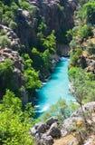 Canion en rivier Royalty-vrije Stock Afbeeldingen