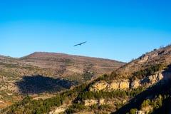 Canion Rio Leza. Amazing view of the Canion Rio Leza from spain Stock Photo
