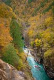 Canion van bergrivier in dalingsseizoen Stock Afbeelding