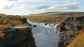 Canion van de rivier en de mening van Hvita over schilderachtige watervallen die door lavagebieden vloeien, Hraunfossar stock videobeelden