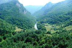 Canion van Tara rivier stock afbeelding