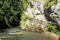 Caniondoorbraak in Slowaaks Paradijs Stock Afbeelding